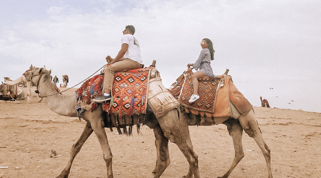 Things to do in Cairo: Camel Riding